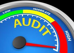 Parker Business audit proce